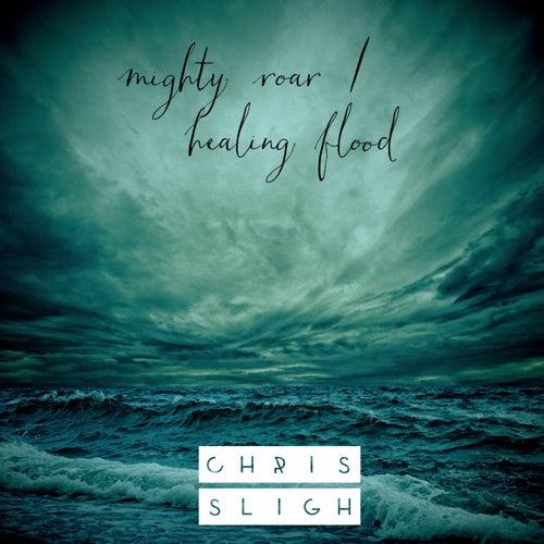 Mighty Roar / Healing Flood by Chris Sligh