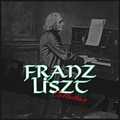Franz Liszt Collection de Various Artists