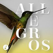 Allegros von Various Artists