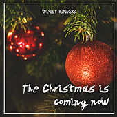 The Christmas Is Coming Now by Wesley Ignacio