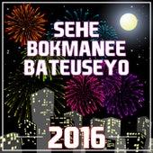 Sehe Bokmanee Bateuseyo 2016 by Various Artists