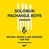 For You (Remixes) by Michael Mayer