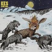Kamlama (Deluxe) by Kes