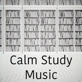 Calm Study Music von Entspannungsmusik
