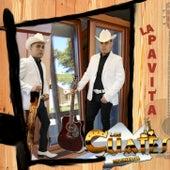 La Pavita de Los Cuates De Sinaloa
