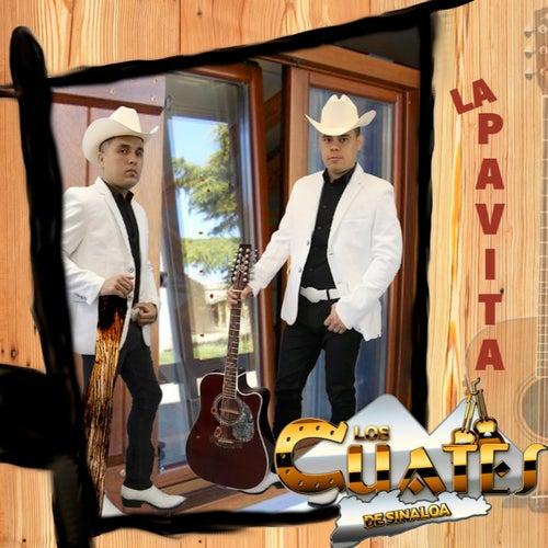 La Pavita by Los Cuates De Sinaloa
