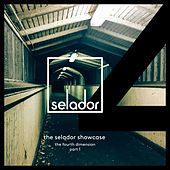 The Selador Showcase - The Fourth Dimension, Pt 1 by Various Artists