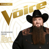 The Complete Season 11 Collection (The Voice Performance) de Sundance Head
