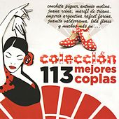 113 Mejores Coplas by Various Artists