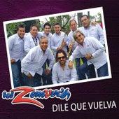 Dile Que Vuelva by Los Zemvers