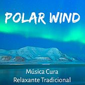 Polar Wind - Música Cura Relaxante Tradicional para Saude Mental Floco de Neve Feriado de Natal com Sons de Natureza New Age Instrumentais by Various Artists