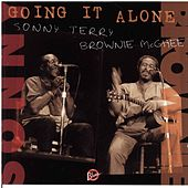 Going It Alone by Various Artists