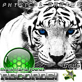 Irbis by Physical Dreams