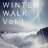 Winter Walk Vol. 1 by Various Artists