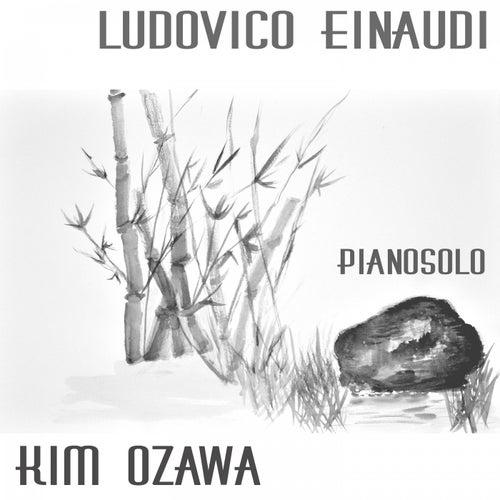 Ludovico Einaudi - Pianosolo de Kim Ozawa