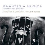 Phantasia Musica by Furor Musicus