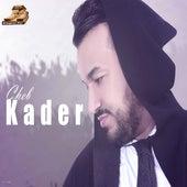 Ajoutini Fi Galbek by Cheb Kader