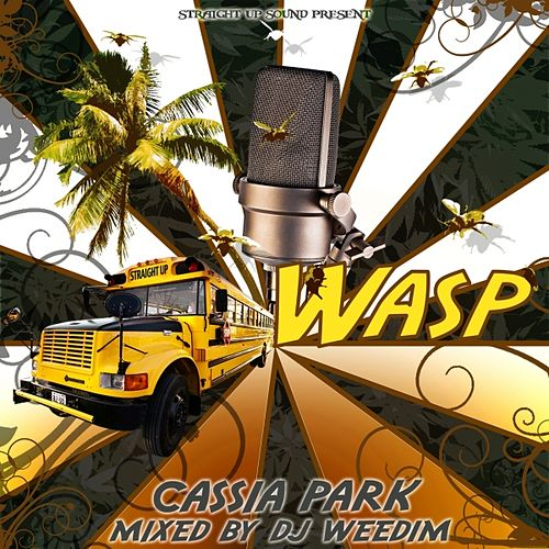Cassia Park by Straight Up Sound