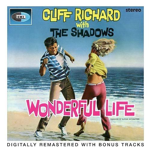 Wonderful Life by Various Artists