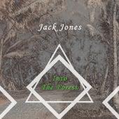Into The Forest de Jack Jones