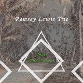 Into The Forest von Ramsey Lewis