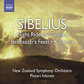 SIBELIUS, J.: Night Ride and Sunrise / Belshazaar's Feast Suite / Pan and Echo (Inkinen) von Pietari Inkinen