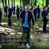 Smooth Shake by Brussels Jazz Orchestra