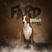 Pitbull (Gorex Remix) von Fard