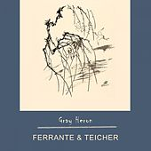 Gray Heron by Ferrante and Teicher