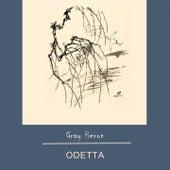 Gray Heron by Odetta