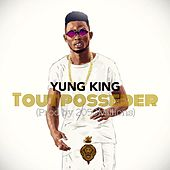 Tout posseder by Yung King