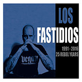 1991 - 2016 25 Rebel Years de Los Fastidios