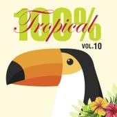 100% Tropical, Vol. 10 de Various Artists