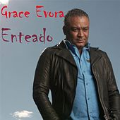 Enteado by Grace Evora