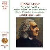 Liszt: Paganini Studies by Goran Filipec