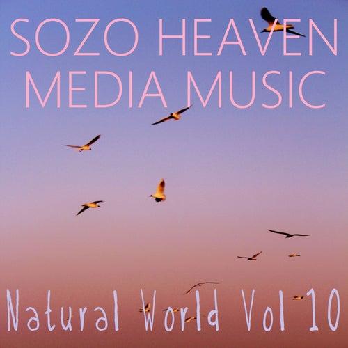Natural World, Vol. 10 by Sozo Heaven