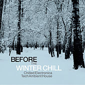 Before the Winter Chill (Chilled Electronica Tech Ambient House) by Various Artists