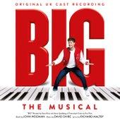 Big: The Musical (Original UK Cast Recording) de Various Artists