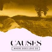 Where Does Love Go de Causes