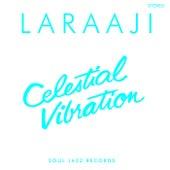 Celestial Vibration by Laraaji