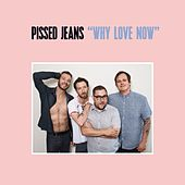 Ignorecam by Pissed Jeans