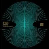 Secops025 de Seba