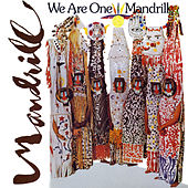 We Are One by Mandrill