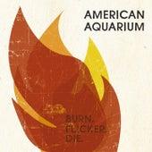Burn.Flicker.Die. by American Aquarium