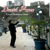 Cosas Tremendas Verán de David Ponce