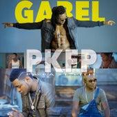 Pa Ka Fe Pitit (feat. Master Brain) by Gabel