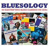 Bluesology von Various Artists