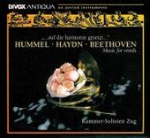 Hummel: Parthia in E-Flat Major / Haydn, J.: Symphony No. 70 / Beethoven: Sextet in E-Flat Major by Kammersolisten Zug