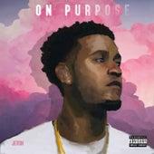 On Purpose by Jevon