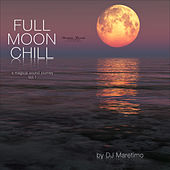 Full Moon Chill, Vol. 1 (A Magical Sound Journey) by Various Artists